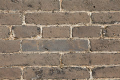 The brick wall Stock Image