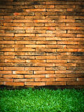 Brick Wall and Green Grass. Old Brick Wall and New Green Grass vertical Royalty Free Stock Photos