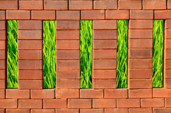 Brick wall and green grass Royalty Free Stock Photography