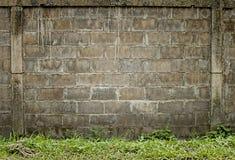 Brick wall. And green grass Royalty Free Stock Image
