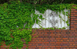 Brick wall and green landscape Stock Image