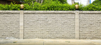 Brick wall and green leaf stock images