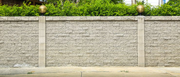 Brick wall and green leaf royalty free stock images