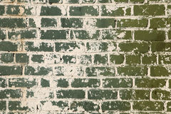 Brick wall. Green brick wall with splashes of concrete Royalty Free Stock Image