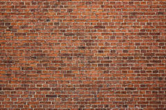 Brick wall. Grunge red brick wall background with copy space Stock Image