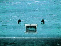 Blue Brick Wall with peeling paint background texture royalty free stock image