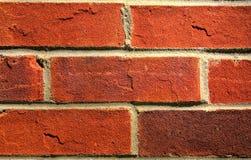 Brick Wall HDR royalty free stock photo