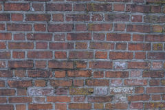 Brick Wall of Historic Civil War Fort4 royalty free stock photos