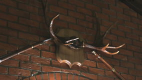 Brick wall with lamps, moose antlers, two guns stock video footage