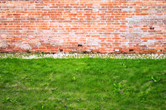 Brick wall and lawn Stock Images