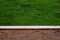 Brick wall and lawn Stock Image