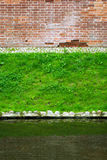 Brick wall, lawn and pond Stock Photos