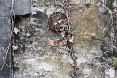 Brick wall with layers of weathered stucco. Brick wall with layers of old stucco. A rusty metal plate and a dead plant on the wall give this background a Stock Photography