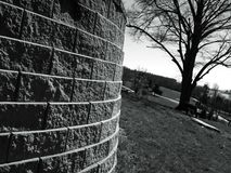 Brick wall leads around to a tree a top a hill Royalty Free Stock Photos