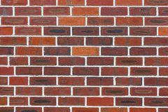 Brick wall. Stock Image