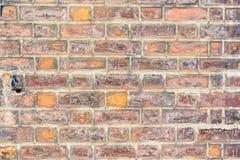 Brick wall. Mauve texture. Royalty Free Stock Images