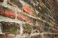 Brick wall on the medieval fortress royalty free stock image