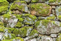 Brick wall with moss. Outdoor beautiful scenery landscape Stock Photography