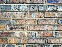 Brick wall. Multi color brick wall Royalty Free Stock Photo