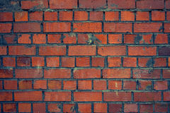 Brick. Wall with a new Stock Photo