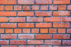 Brick wall. New orange brick wall in a public park Royalty Free Stock Image