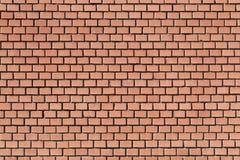 Brick wall Stock Photography