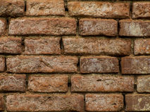 Brick wall. An old red brick wall Royalty Free Stock Image