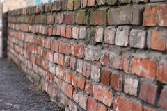 Brick wall of old red brick. Texture of stone and cement. Old paint. Rows and alternation royalty free stock photography