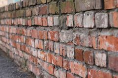 Brick wall of old red brick. Texture of stone and cement. Old paint. Rows and alternation royalty free stock images