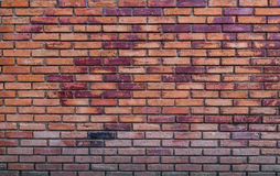 Brick wall. Old vintage brick wall background Stock Images