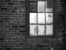Brick wall and old window. Black and white. royalty free stock images