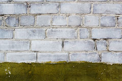 Brick wall with paint Stock Images