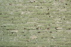 Brick wall painted green background Royalty Free Stock Photography