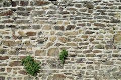 Brick wall pattern Stock Photography