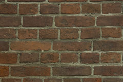 A brick wall for patterns and backgrounds Stock Images