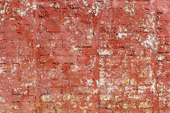 Brick wall peeling red paint. Brick wall shabby red paint. In cracked white paint appears Stock Photography