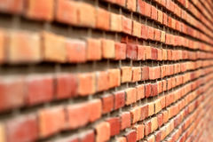 Brick wall Perspective Background, Focus on Center, Natural Color Stock Photo
