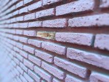 Brick wall. Wall pink hope Stock Images