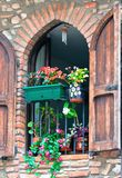 Brick wall with red flowers on window. Old brick wall with bright red flowers on window. vertical shot Royalty Free Stock Photos