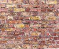 Brick wall. Red and  salmon texture. Stock Image