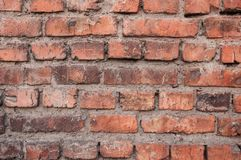 Brick wall. Red brick. stock images