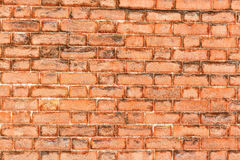 Brick wall. Red  texture. Royalty Free Stock Photos