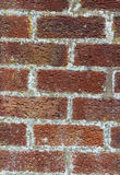 Brick wall. Red  texture. Royalty Free Stock Images