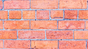 Brick wall. Red  texture. Stock Photo