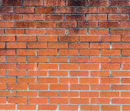Brick wall. Red  texture. Stock Photography