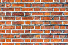Brick wall. Red texture. Can Stock Image