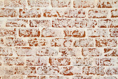 Brick wall. Red and white brick wall background Stock Image