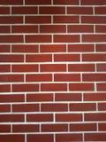 Brick wall. Brick wall is scarlet color Royalty Free Stock Photos