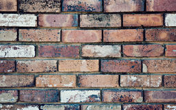 Background, brick wall Royalty Free Stock Images