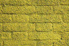 Brick wall with stucco texture Stock Image